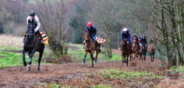 Gallops Jan 2012